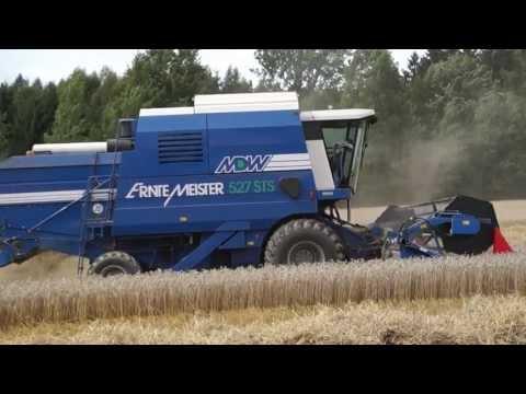 Weizen Ernte 2013
