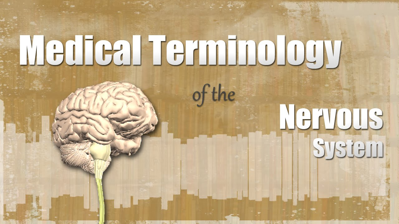 medical terminology chapter 10 This best-selling introduction to medical terminology is flexible enough to be used in traditional or self-instructional course formats unit i word parts and medical terminology chapter 1 word pronunciations chapter 2 word parts and word building rules unit ii root words, medical.