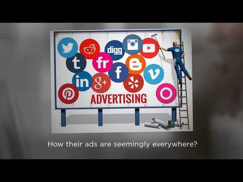 Minneapolis SEO Expert & Freelance SEO Expert – Twin Cities Marketing