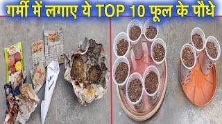 गर्मी में लगाए ये टॉप 10 फूल के पौधे ll Best Top 10 Summer Flower Plants ll Summer Flowers in India