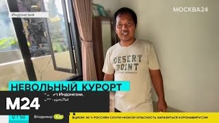 Россияне вернулись на родину из Индии - Москва 24