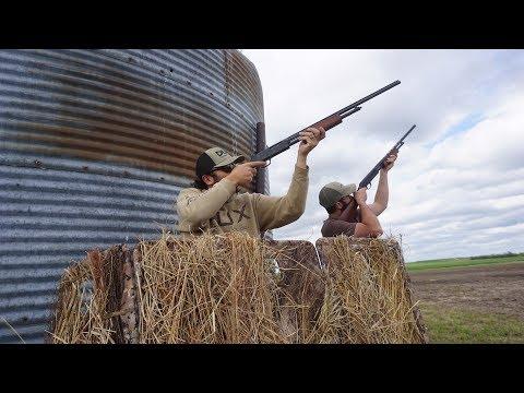 Pump Action .410 Grain Silo Pigeon Hunt!!