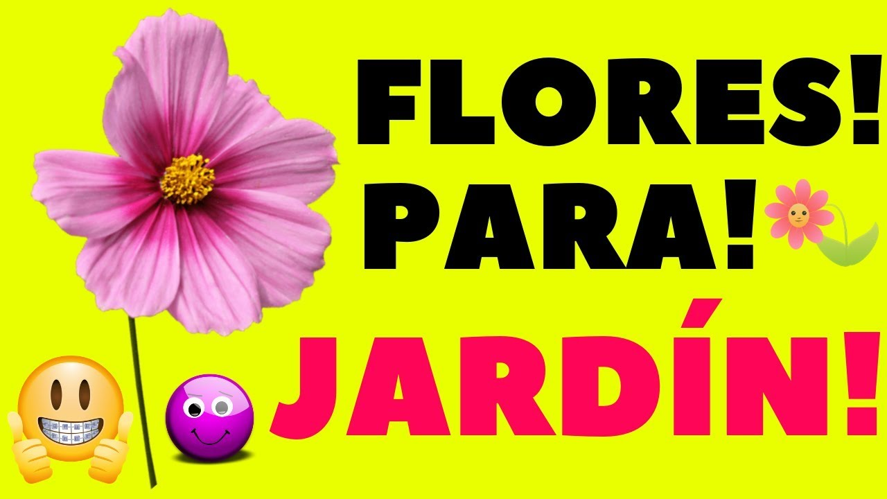 16 plantas de jard n con flores resistentes al sol youtube - Plantas de balcon resistentes al sol ...