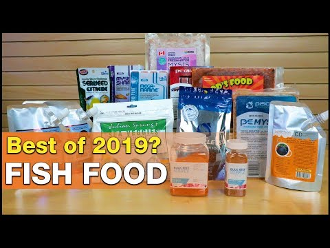 Top 3 Fish Foods For 2019! BRS's BEST Dry And Frozen Saltwater Fish Foods.