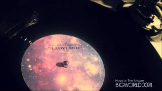"THE BLACK SCIENCE ORCHESTRA  ""LADY LAND"""