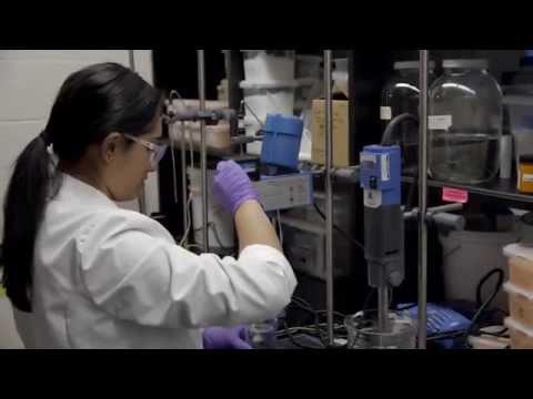 Mridula - Research & Development