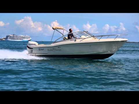 Bermuda Marine