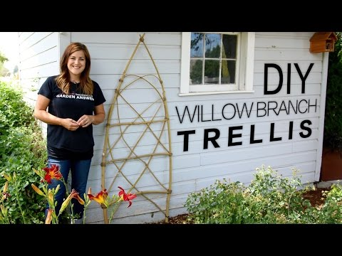DIY Willow Branch Trellis (Full Version) // Garden Answer