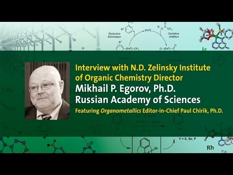 Interview with N.D. Zelinsky Institute of Organic Chemistry Director