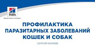 """Коняев С.В. """"Профилактика паразитарных заболеваний кошек и собак"""""""