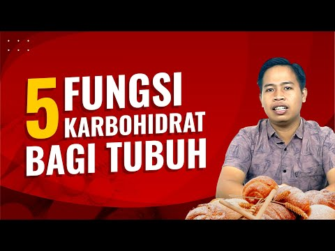 Inilah 5 Fungsi Karbohidrat Bagi Tubuh | ESSENTIAL OIL ROSEVARA