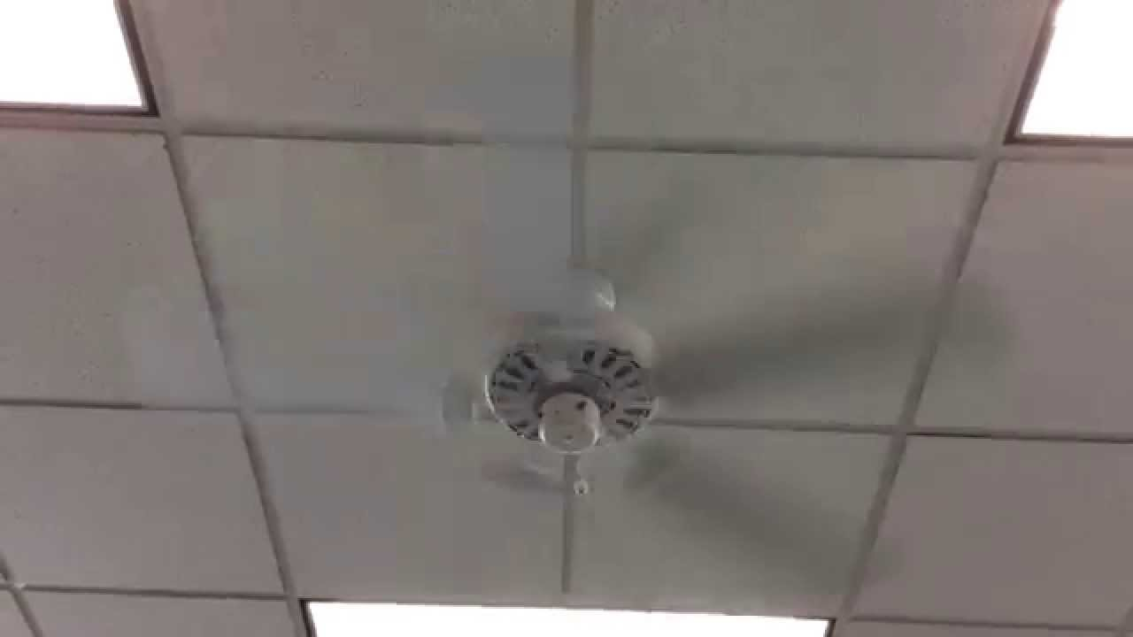 52 broan europa ceiling fans and a big fan in a video store 52 broan europa ceiling fans and a big fan in a video store aloadofball Images