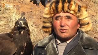 Защита животных в Казахстане