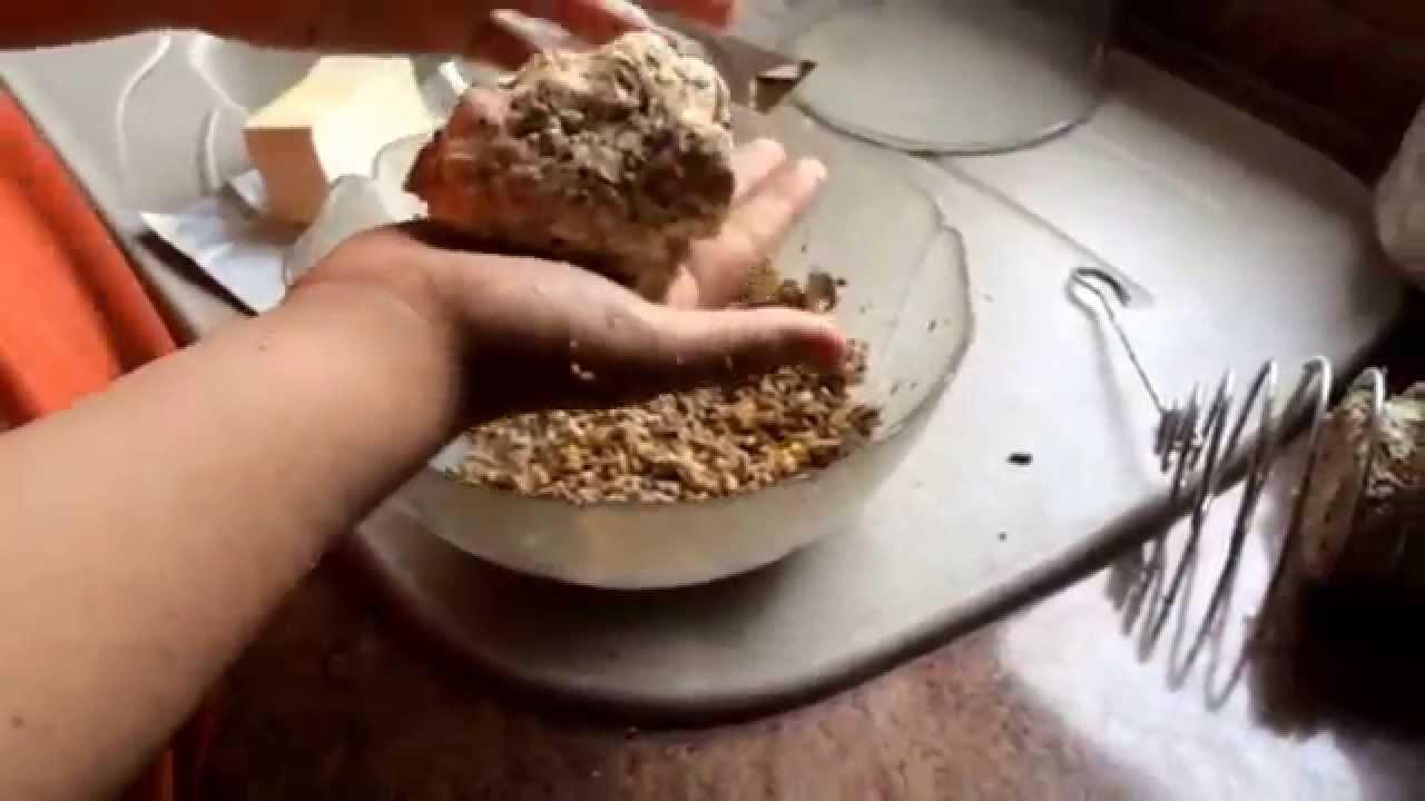 Fabrication de boules de graisse pour oiseaux youtube - Boule de graisse oiseau ...