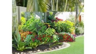 Gambar cover Small tropical garden ideas