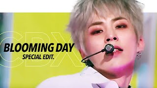 EXO-CBX 첸백시 - 'Blooming Day' Stage Mix(교차편집) Special Edit.