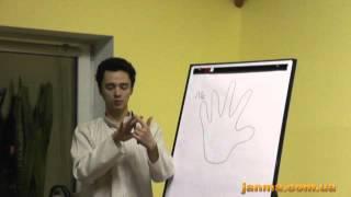 Открытые видео уроки для начинающих - 6 часть