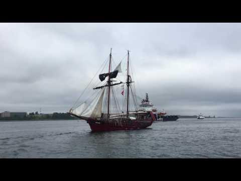 Beautiful TALL SHIPS - 2017 HALIFAX NOVA SCOTIA HARBOUR