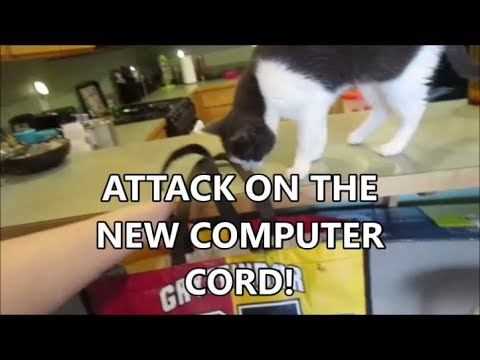 ATTACK ON NEW COMPUTER CORD 7.6.19 day2201