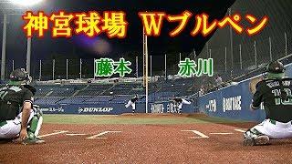【東京バンバータ】藤本&赤川のWブルペンカメラ|赤川 現役引退以来の神宮球場