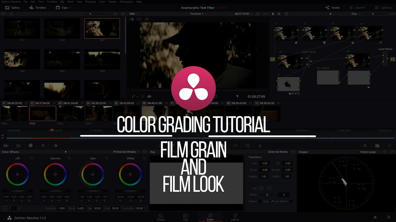Color Grading Tutorial: Film Grain and Using LUTs Davinci Resolve
