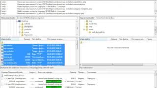Заливка файлов на сервер и установка wordpress