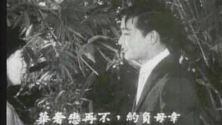 Connie Chan 陳寶珠/呂奇 姑娘十八一朵花 選輯片段 1966