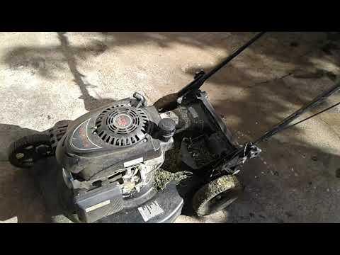 Harbor freight Predator mower engine review