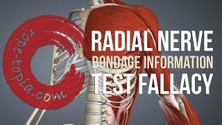 SHIBARI TUTORIAL: Radial nerve test fallacy