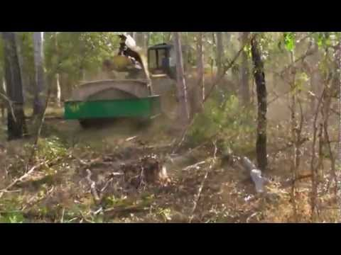 QLD Native Forest Management Mechanical Silviculture