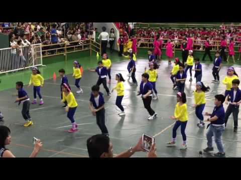 DLSL MASS DANCE Level 2 SY 2016-2017