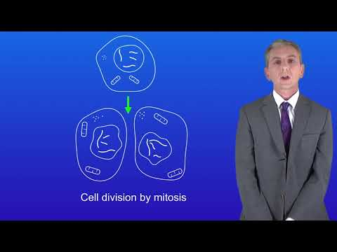 GCSE Science Biology (9-1) Cell division by Mitosis