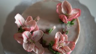 Lily magnolia flower piping 앙금…