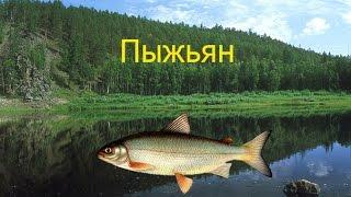 Русская рыбалка 3.8 (Повышение кармы)