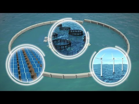 French Polynesia to host world's first floating city