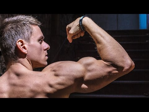 Build MUSCLE & Strength with CALISTHENICS