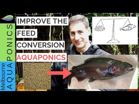 Produce More Fish With Less Feed...