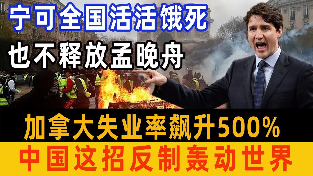 加拿大嚣张放言宁可全国活活饿死,也绝不释放孟晚舟。中国一招反制,加拿大一夜之间新增500w失业人口。#孟晚舟#加拿大#中国反制#