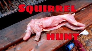 How to hunt Squirrel - CATCH CLEAN AND COOK