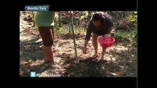 Teknologi Penolong Petani