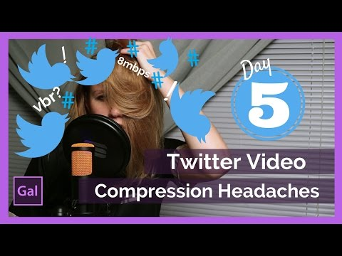 dcd00621d8 How to Export Your Video To Twitter from Premiere Pro cc - YouTube