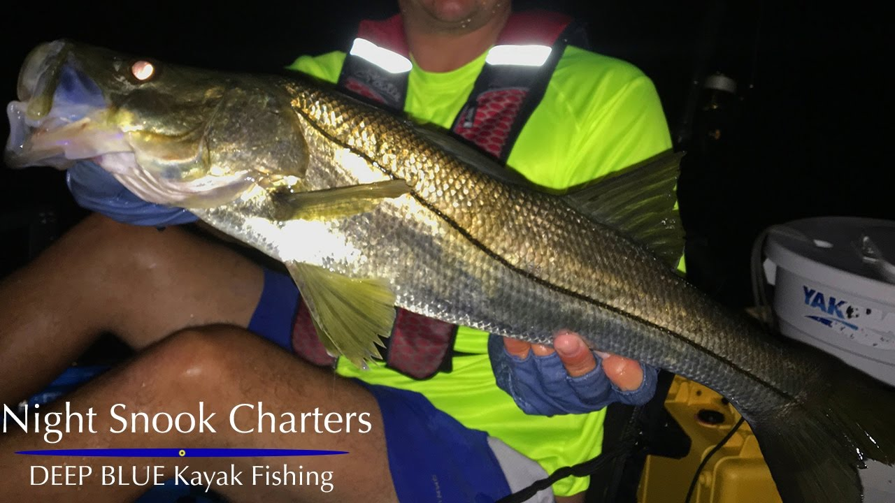 Night snook fishing southeast florida deep blue youtube for Southeast florida fishing report