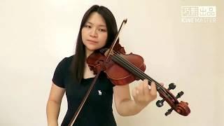 Ed Sheeran - Perfect(Violin Cover)