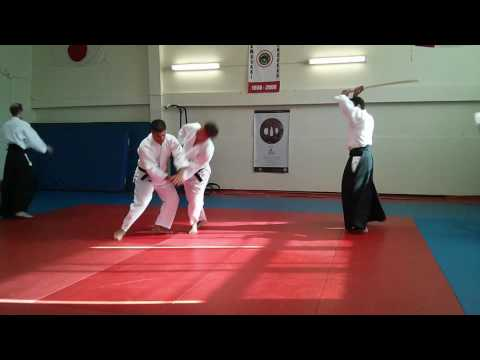 HCJCC - A Taste of Japan - 2014-07-26 - Aikido Demo