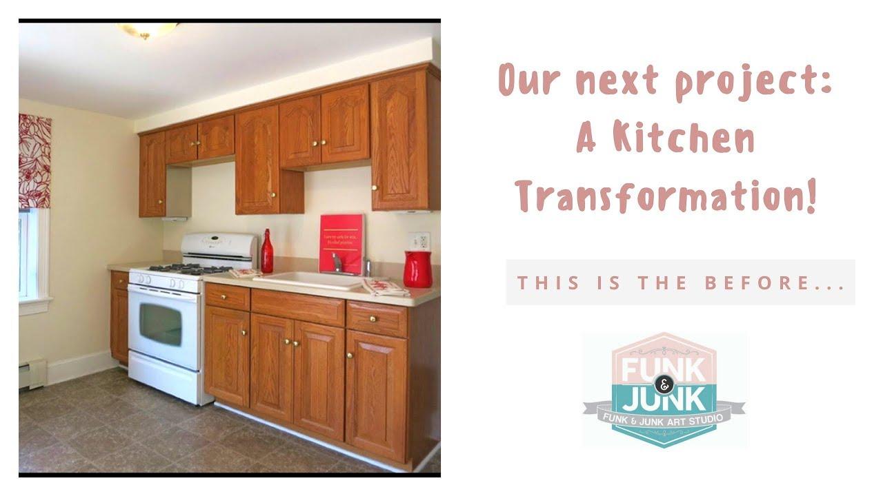 DIY Kitchen Cabinet Remodel Transformation with Annie ...