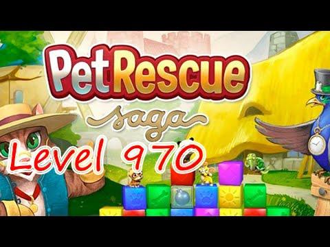 Pet Rescue Saga Level 970 (NO BOOSTERS)