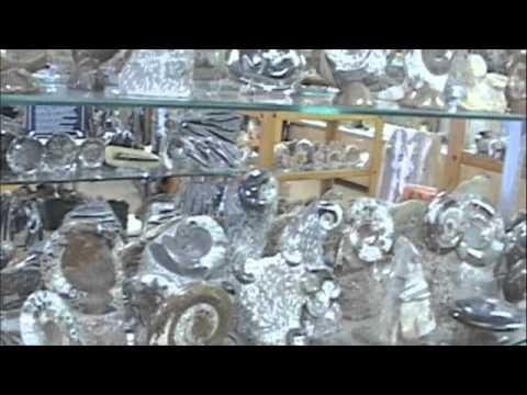 Most beautiful Petrified Wood in the World in Arizona - Video by Robert Swetz July 2010