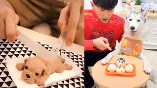 Dog Reaction to Cutting Cake - Funny Dog Cake Reaction Compilation (2019)