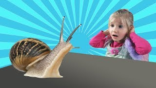 Fun Outdoor Playground for kids | Entertainment for Children | Snails
