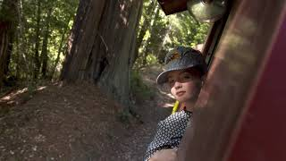 Promo: Family Travel with Colleen Kelly - Mendocino County, California